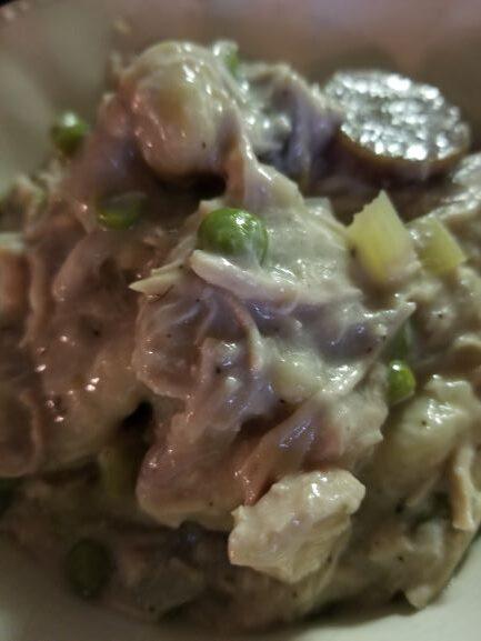 Crockpot Chicken and Dumplings closeup